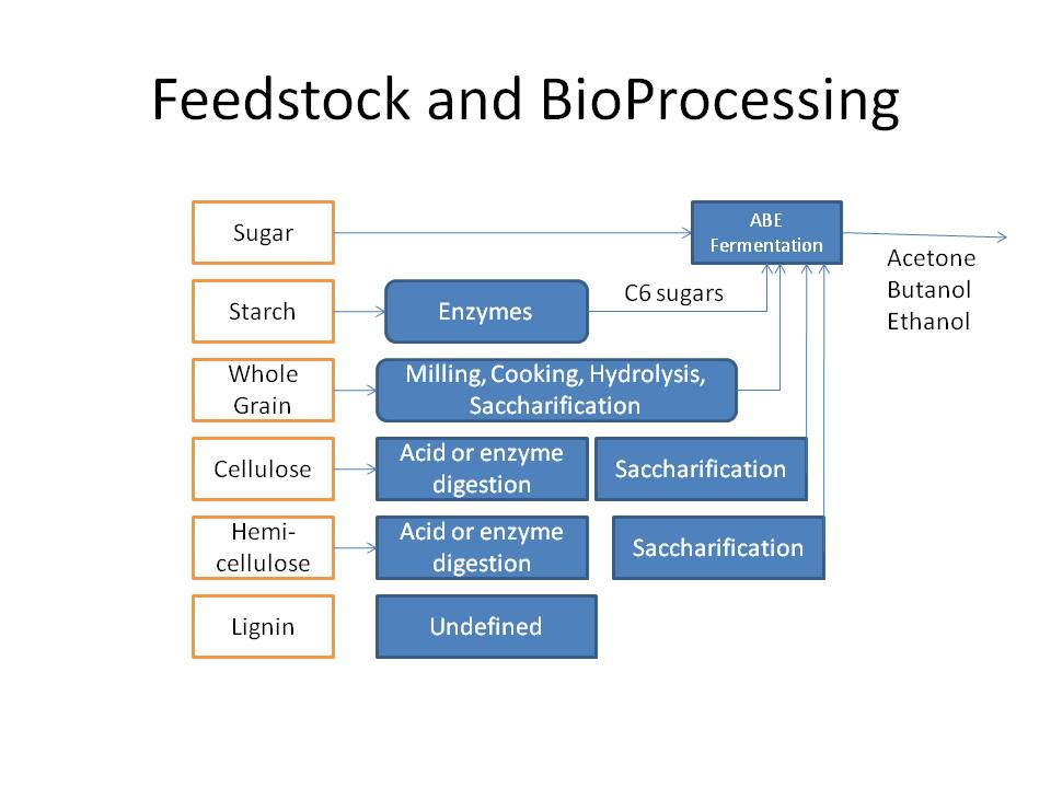 Biobutanol Feedstocks